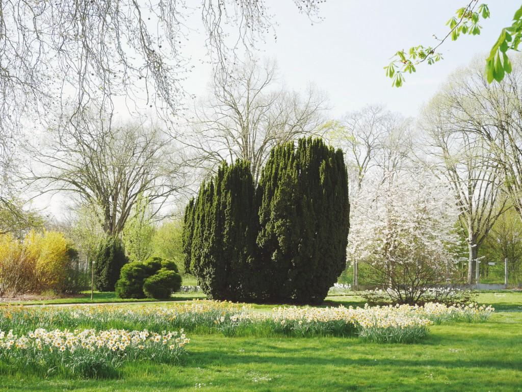 Jardin de l'Ecole de Breuil
