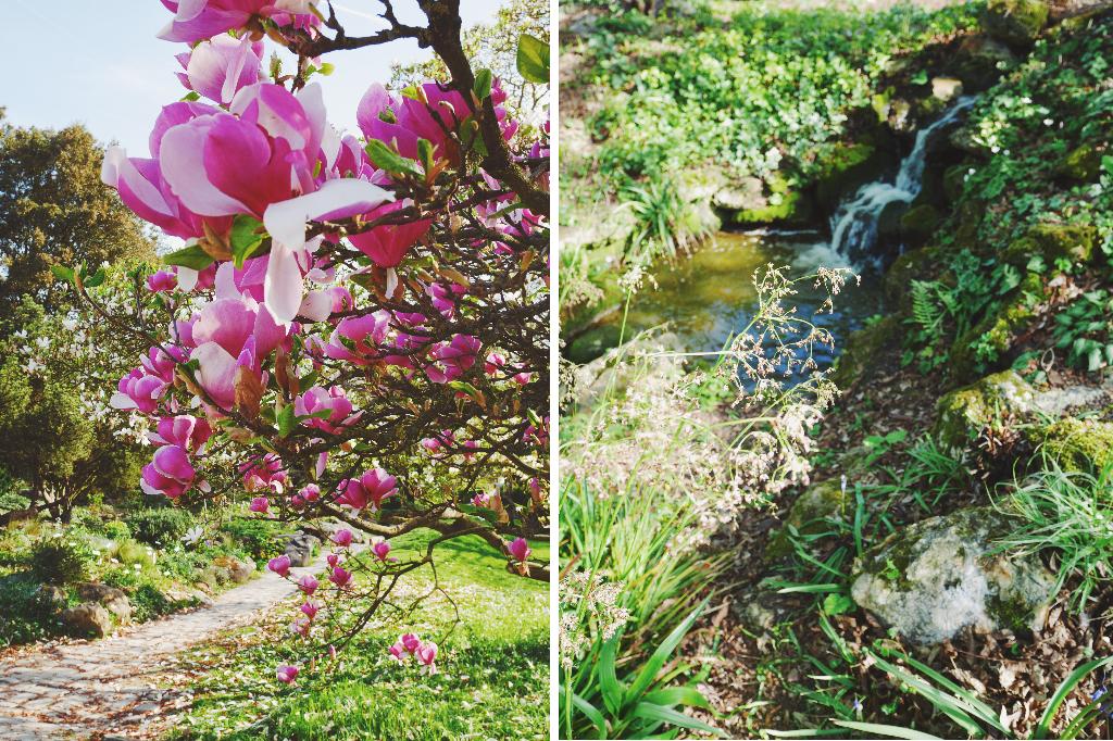 Jardin Breuil 2