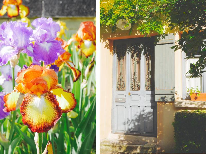 iris village